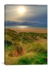 Path to the beach, Canvas Print