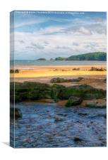 Stream at Coppet Hall, Saundersfoot, Canvas Print