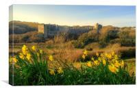 Manorbier Castle in Spring, Canvas Print