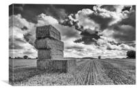 Hay Bales at Summers End, Canvas Print