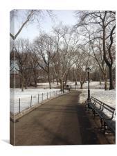 Central Park Snow scene, Canvas Print