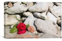 Remembering a Loved One, Canvas Print