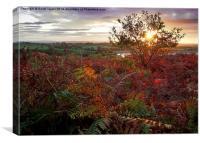 Autumn at Anglezarke, Canvas Print