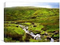 Irish Landscape, Canvas Print