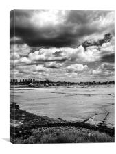 River Blackwater in moody mono, Canvas Print