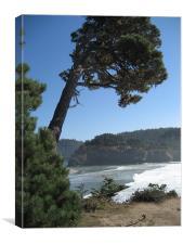 Cliff over beach in Mendocino, CA, Canvas Print