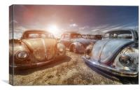 Bugs in the Sun, Canvas Print