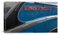 A4 No.4492 Dominion Of New Zealand (Bittern), Canvas Print