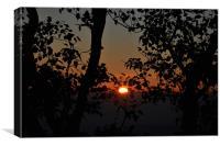 Sunrise in Amarkantak, Canvas Print