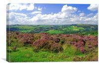 View from Curbar Edge, Peak District, Canvas Print