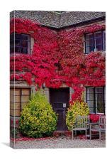 Ivy Cottage, Canvas Print