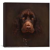 Charlie - The Portrait, Canvas Print