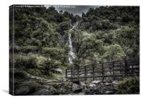 Path to Aber Falls 9, Canvas Print