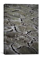 cracked earth under the bridge, Canvas Print