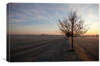 Winter daybreak, Canvas Print