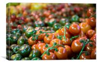 Various  luscious ripe tomatoes, Canvas Print
