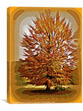 Autumn Poster, Canvas Print