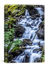 Cadair Idris Waterfall, Canvas Print