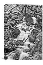 Cadair Idris Waterfall Black And White, Canvas Print