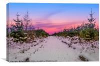 Moel Famau in the snow, Canvas Print