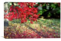 colour of season, Canvas Print