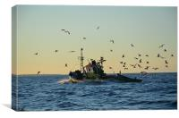 Fishing boat and gulls, Canvas Print