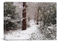 Epping Forest In The Snow, Canvas Print