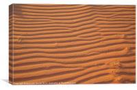Desert Sands, Canvas Print