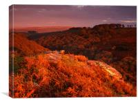 Sunset Over Plym Valley,Dartmoor, Canvas Print