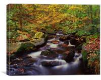 Padley Gorge Waterfalls, Canvas Print