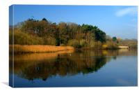 Chard Reservoir & Nature Reserve, Canvas Print