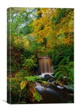 Rivelin Valley Waterfall, Canvas Print
