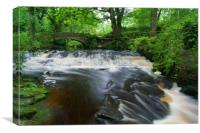 River Rivelin,Pack Horse Bridge & Weir, Canvas Print
