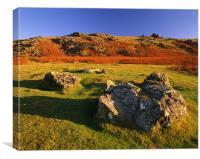 Sourton Tor,Dartmoor, Canvas Print