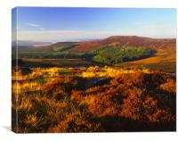 Upper Burbage Valley Looking Towards Higger Tor & , Canvas Print