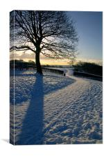 Footpath Through The Snow, Canvas Print