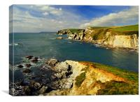 Aymer Cove, Near Bigbury on Sea, South Devon, Canvas Print