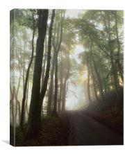 Foggy Lane Near Castleton, Canvas Print