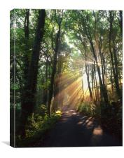 Light Rays through Castleton Lane,Peak District, Canvas Print