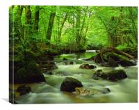 River Yealm at Yealmpton, Canvas Print