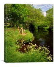 River Teign near Chagford, Canvas Print