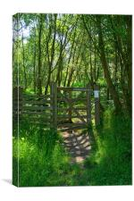 Wharncliffe Woods, Sheffield, South Yorkshire, Canvas Print