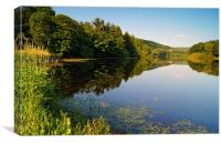 More Hall Reservoir, Peak District near Sheffield, Canvas Print