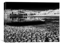 Drought at Burrator Reservoir, Canvas Print