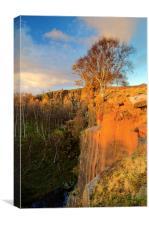 Bole Hill Quarry Edge, Canvas Print