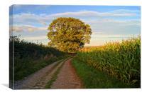 Oak Tree & Country Lane, Canvas Print
