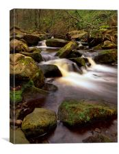 Falls & Rocks in Padley Gorge, Canvas Print
