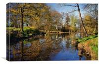 Graves Park Pond, Canvas Print