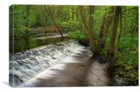 Rivelin Falls in Spring