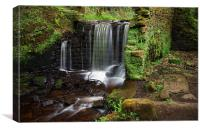 Rivelin Falls in Spring 3, Canvas Print